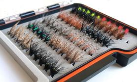 Pudełko z mokrymi muchami (50 sztuk)